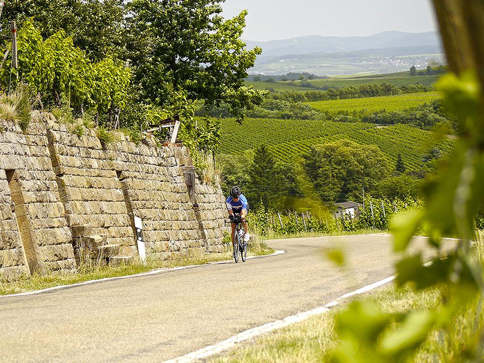 CHALLENGE Heilbronn – Testen Der Schönen Hügeligen Radstrecke