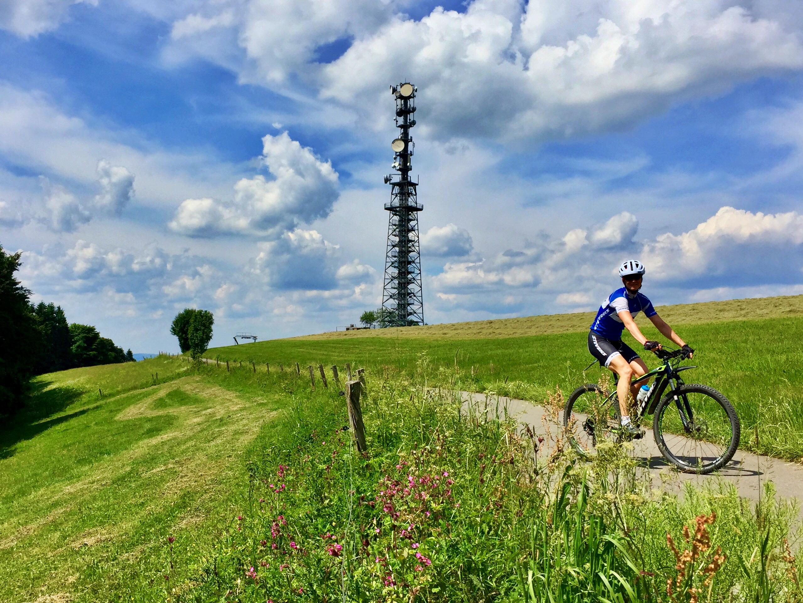 Radtraining Mit Dem MTB At Home (Wildewiese)