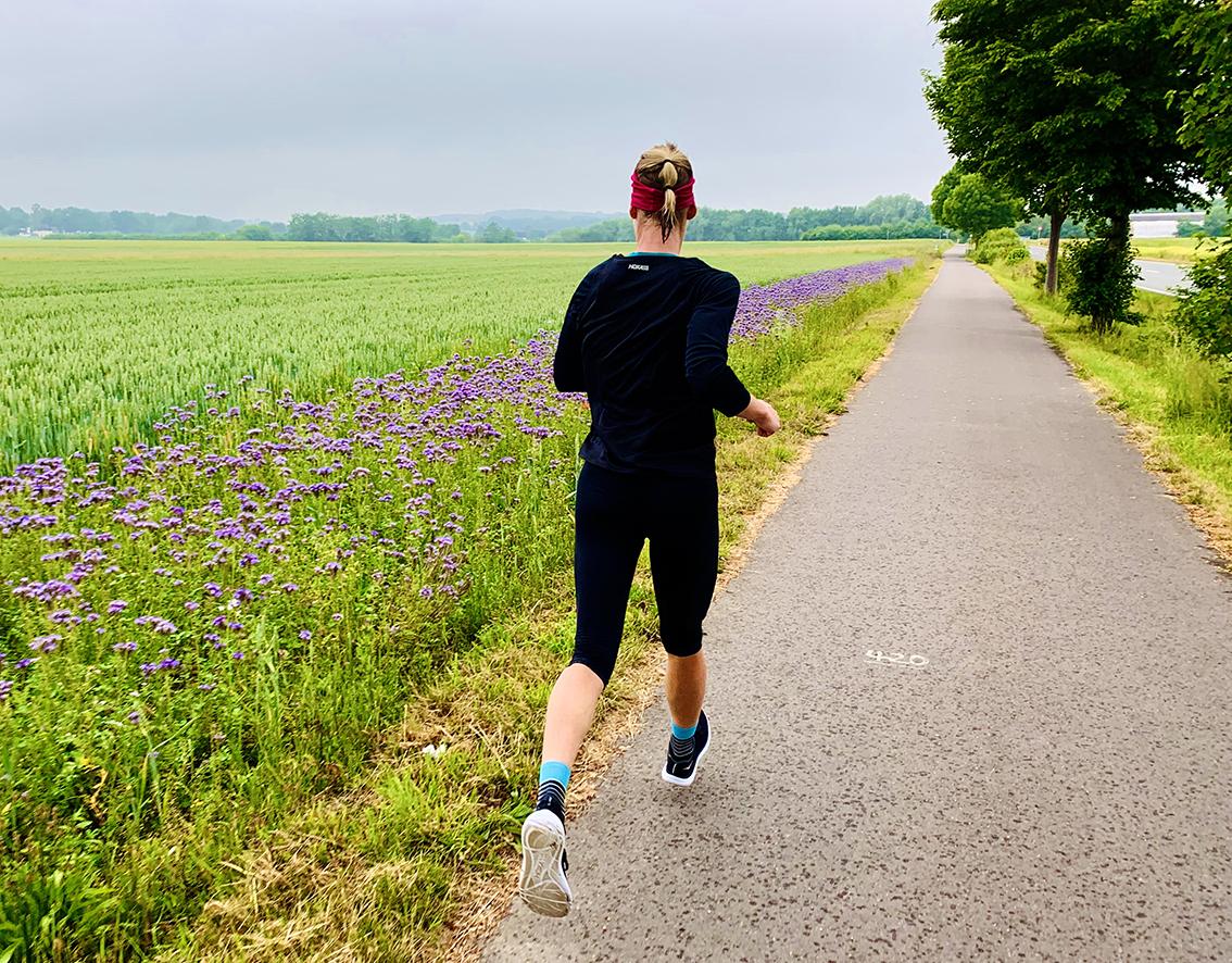 Laufabenteuer Ruhrtalradweg – Lila Pracht Bei Halingen